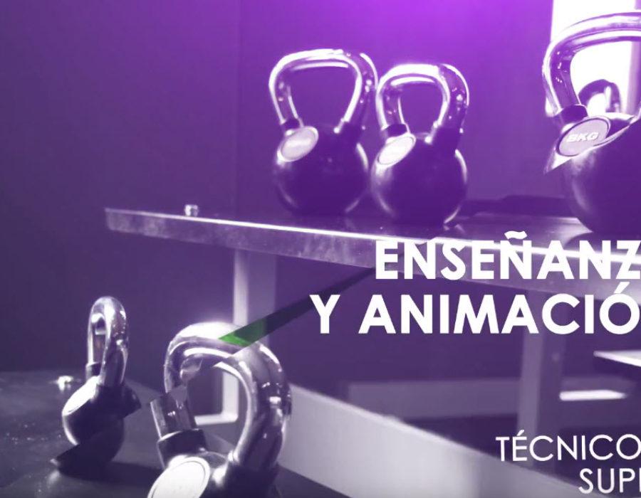 Técnico Superior en Enseñanza y Animación Sociodeportiva (Antiguo TAFAD) _ Escuela CES